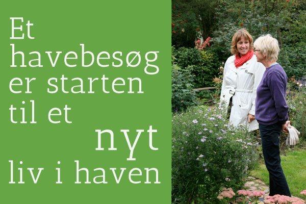 Havearkitekt dk. hjælp til en smuk og nem have